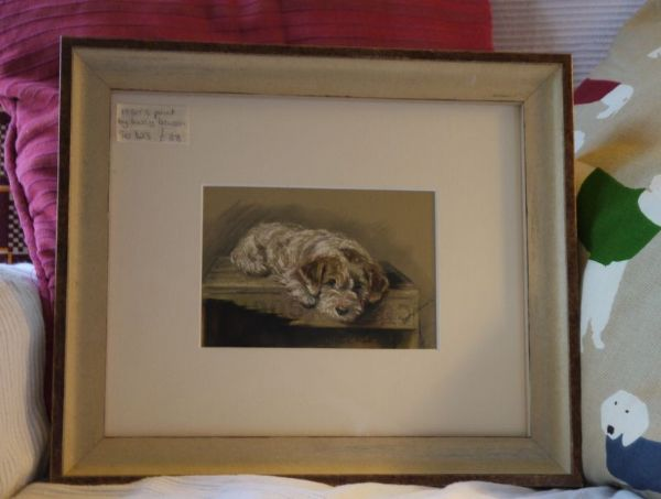 Little White Terrier on a box- Ter D23  1930's print by Lucy Dawson